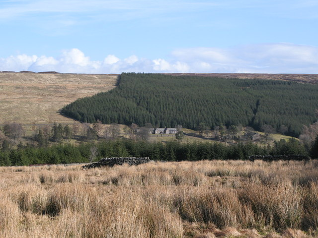 Rough pastures above Allenheads