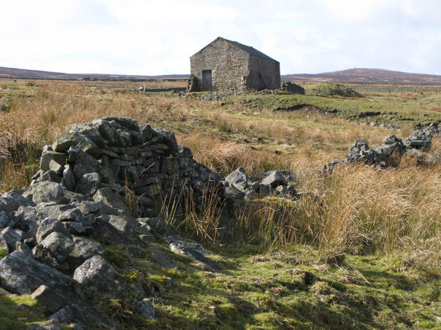 Ruined dry stone wall near West End