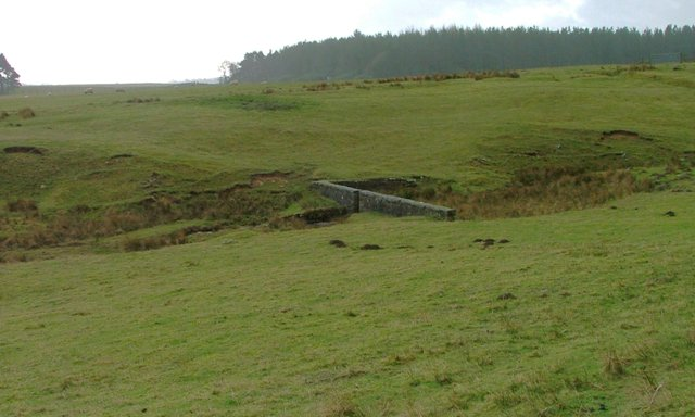 Remains of Old Dam on a Tributary of Ray Burn