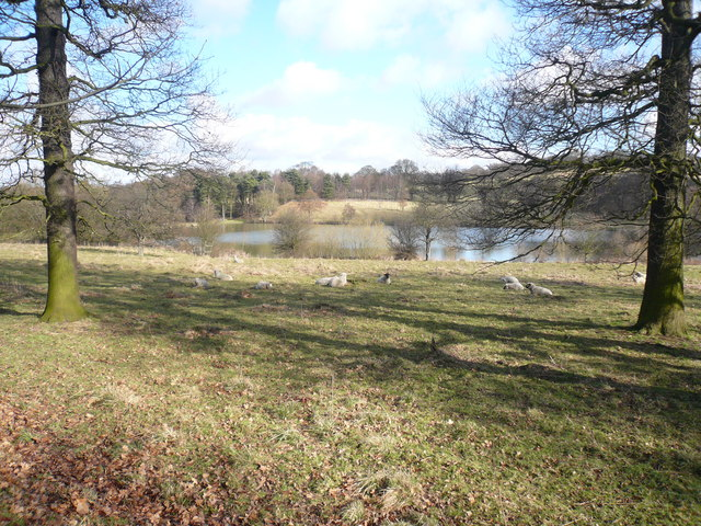 Hardwick Park - Great Pond View