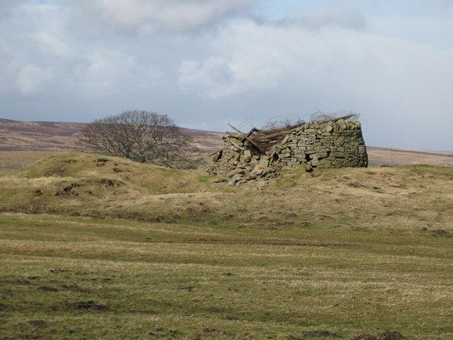 Old mine shaft (2)