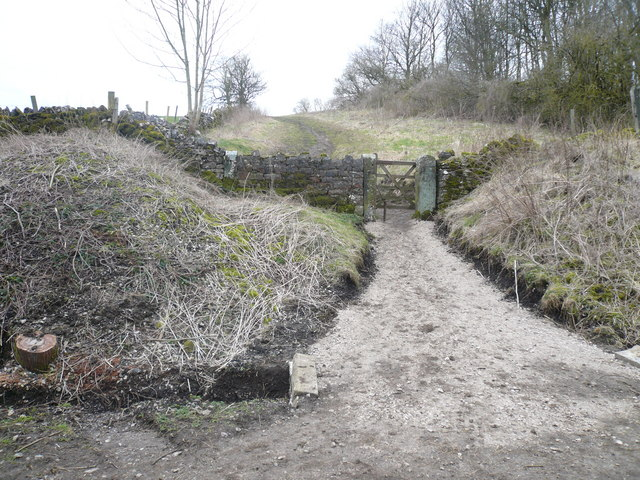 Footpath to Bakewell from Monsal Trail