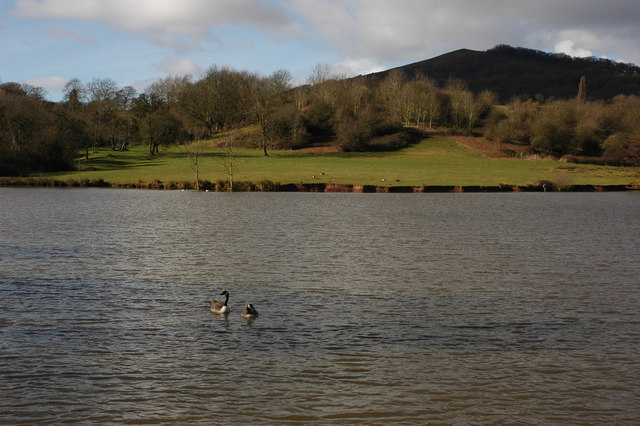 Mill Pond, Hollybed Common
