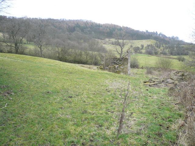 Monsal Trail View