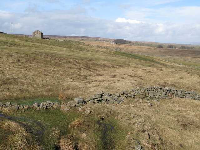 Pastures below West End (2)