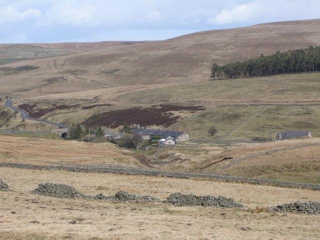 Pastures below West End