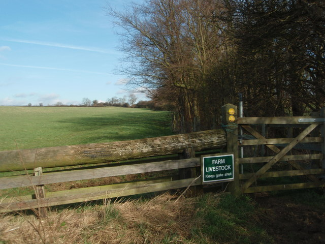 Bridleway on Hungry Hill