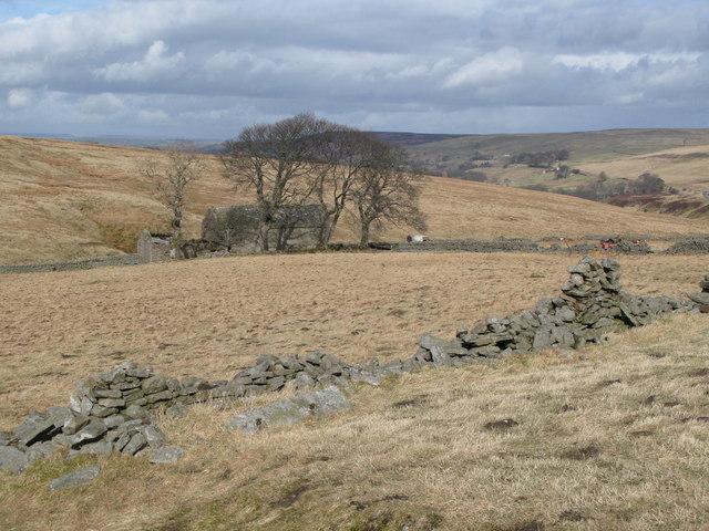 Pastures around Blackcleugh Burn