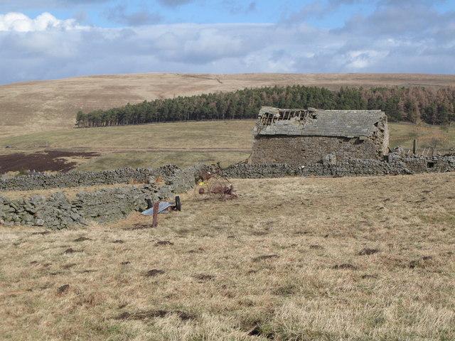 Ruined barn near High Shield (2)