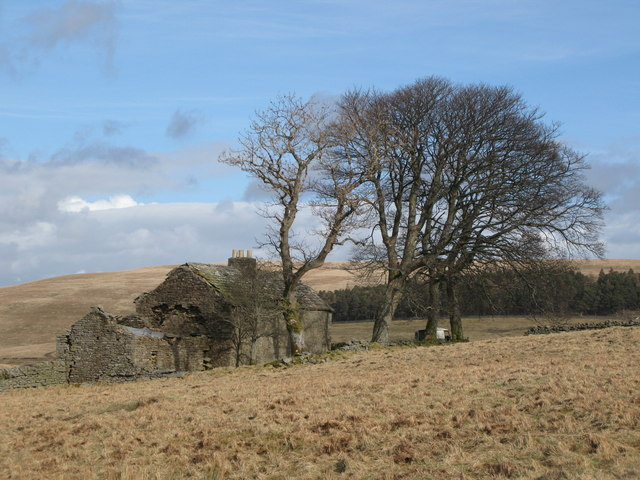 Ruined farmhouse above Blackcleugh Burn (3)