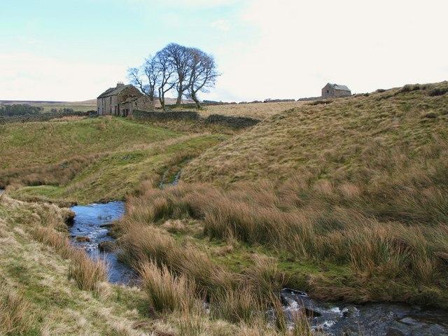 Ruined farmhouse above Blackcleugh Burn (4)
