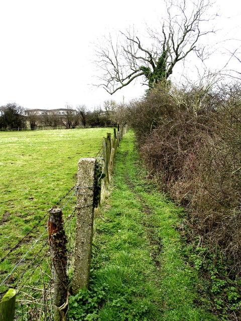 Public footpath west of Preston