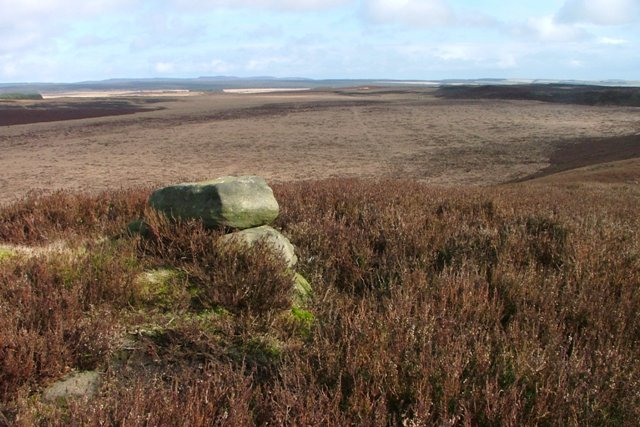 Small Cairn on Black Down