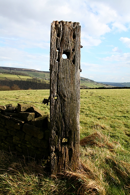 Wooden Gatepost on Lea Bank