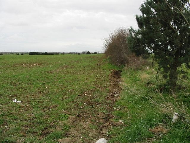 Looking E along field boundary from Seamark Road