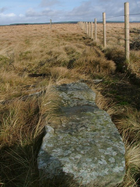 Loughing Stone