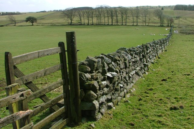 Wall and Gate, Ray Demesne