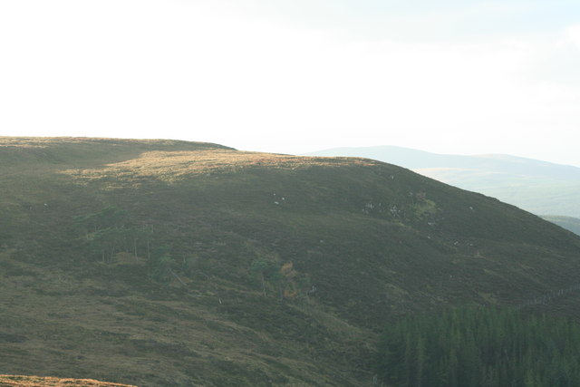 Hillside above plantation