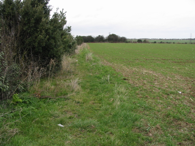 Field boundary along Seamark Road