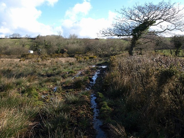 Boggy ground, Badgall Downs