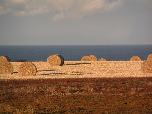 Bales with a view