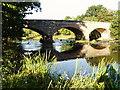 SO1493 : River Severn, Cilgwrgan Bridge by kevin skidmore