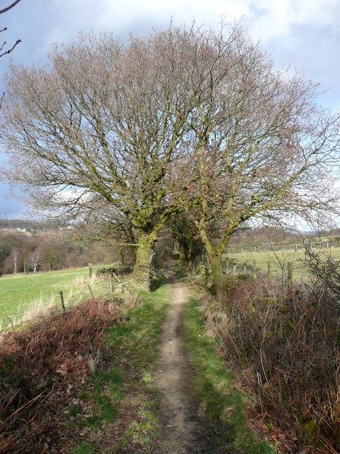 Stubbing Lane, Stainland