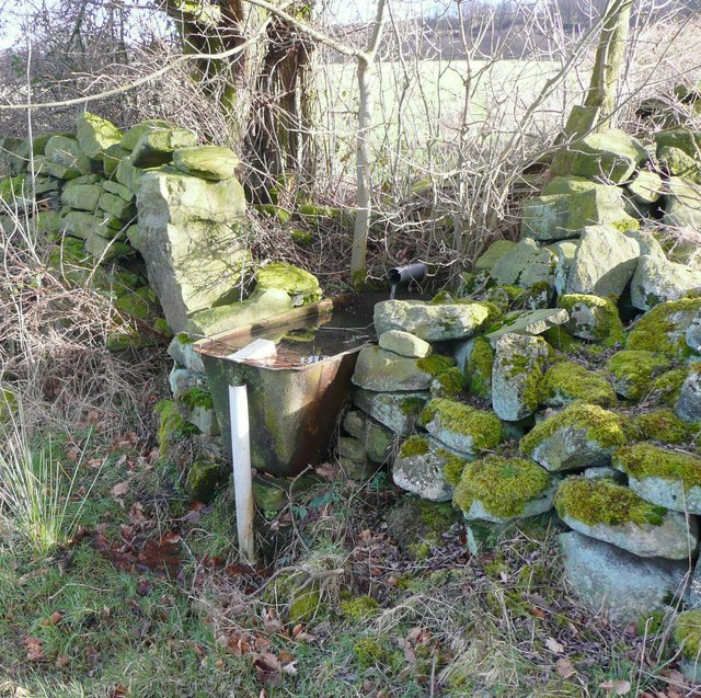 Water trough, Stainland