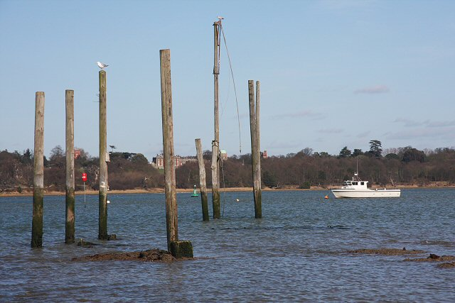 Mooring posts in the River Orwell