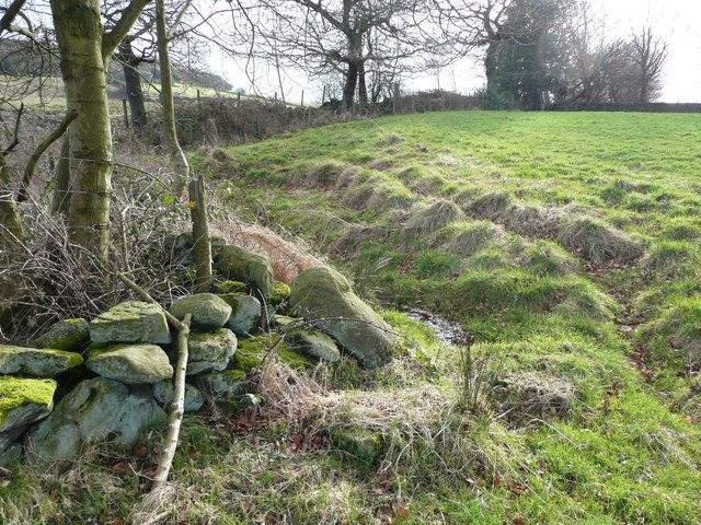 A wet corner, Stainland