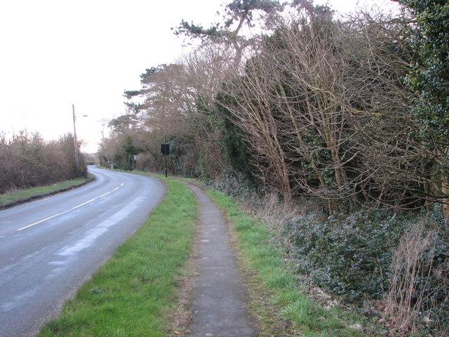 Road Past Fairmile