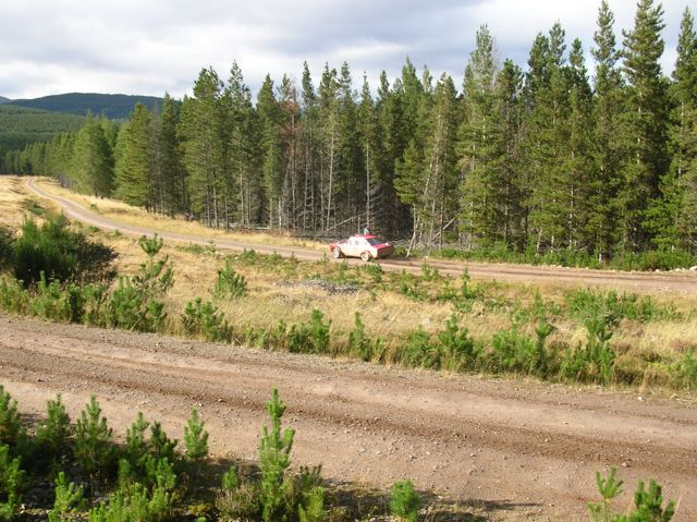 Forestry tracks in Errochty Forest