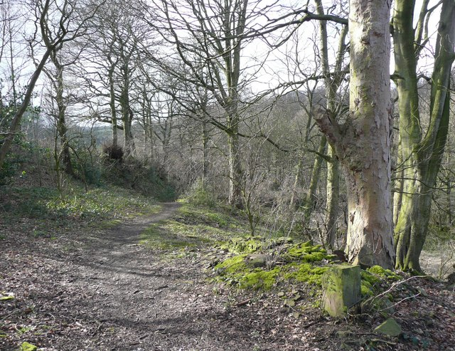 Track to Upper Gatehead Mill, Stainland