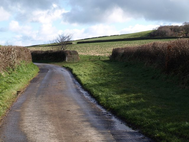 Lane near Tregeare
