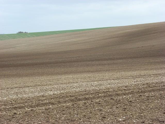 Farmland on the downs above Blewbury
