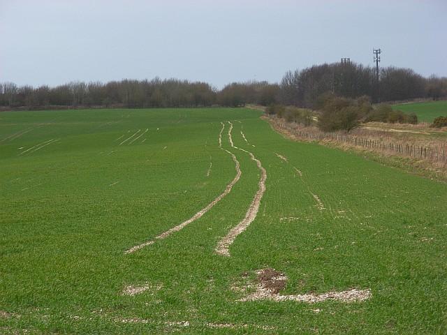 Farmland on the downs above East Ilsley