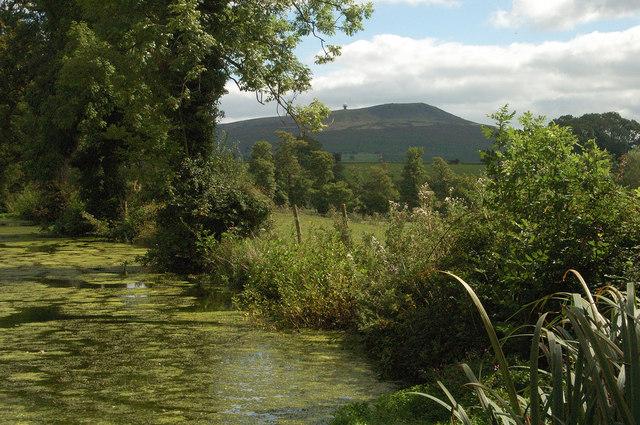 Pond near Stoke Court - Stoke St Milborough