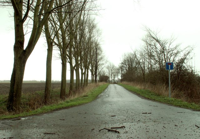 Fen Lane, close to Poplars Farm