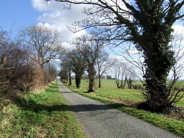 Hungry Hill near Hareby