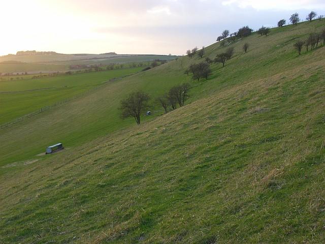 Lollingdon Hill