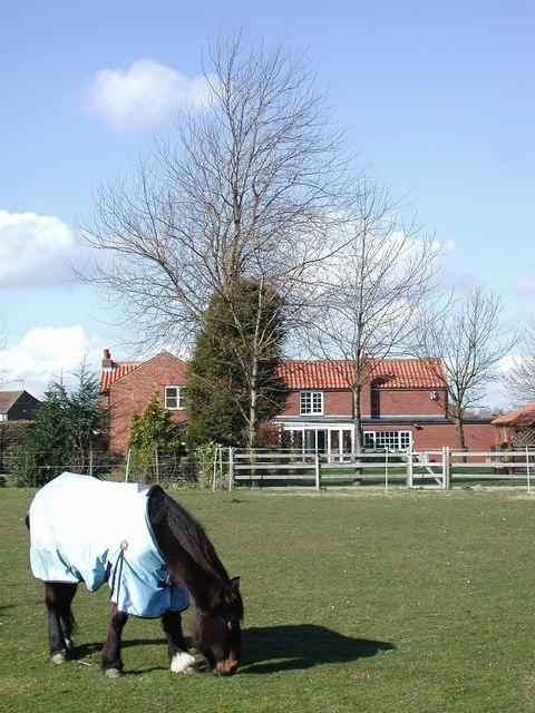 Smithy Cottage, Old Ellerby