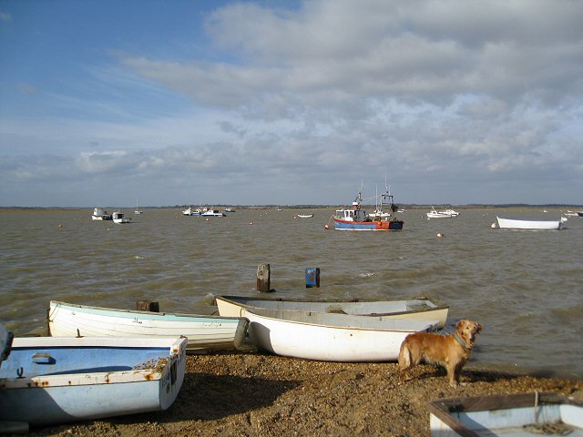 Dinghies on the River Deben