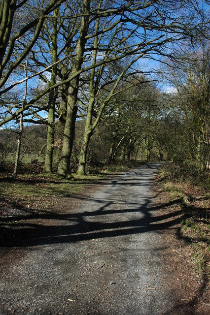 Private road near Hollybush