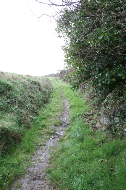 Footpath to the obelisk on Dennis Hill