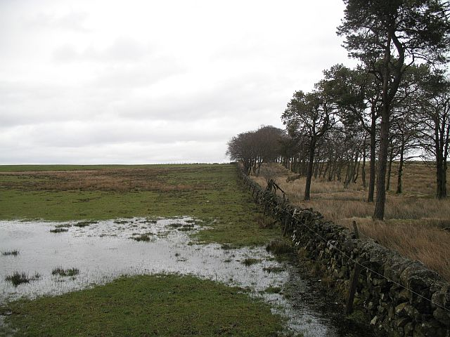 Flooded land, Woolfords