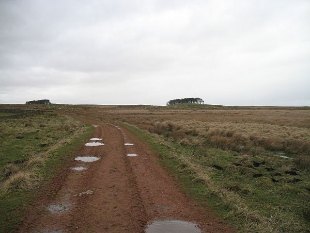 Wet farmland, Woolfords Cottages