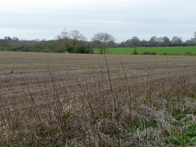 Arable land south of The Grange