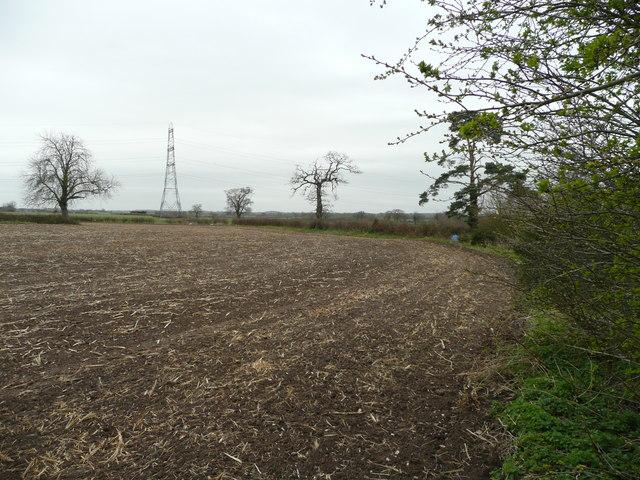 Corner of an arable field