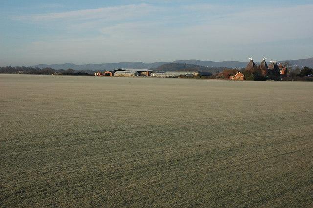 Frosty field at Baynhall Farm