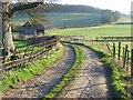 SU7886 : Track and barn in the Hambleden Valley by Andrew Smith